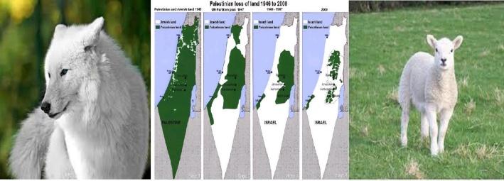 Wolf-Israel-Lamb