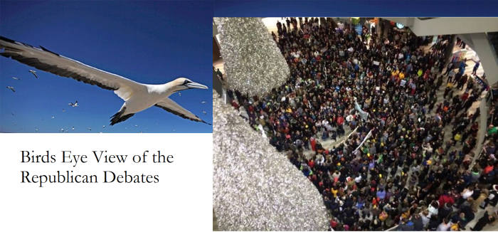 BirdsView of Republicans